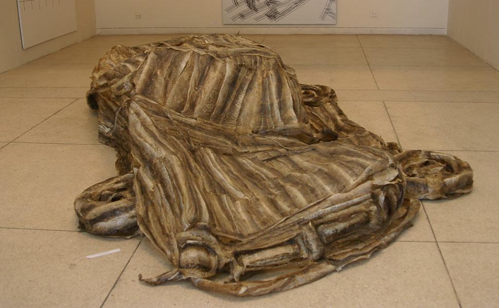 Shredded-skin-fish-car-detail-exhibition-view-2
