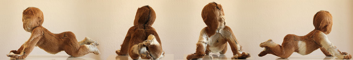 baby1-all-view