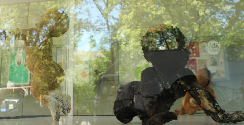 detail-image-vitrine-2