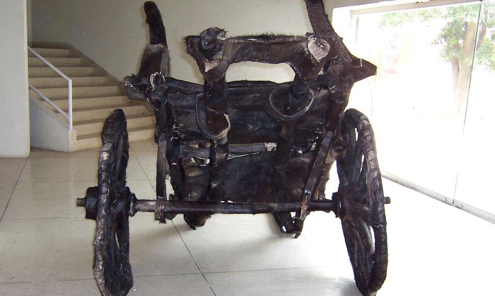 horse-cart-tanga-gallery-1