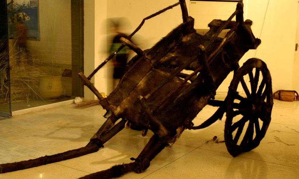 horse-cart-tanga-gallery-2